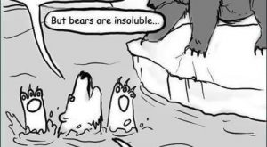 "*""But bears are mostly insoluble in water."" I can think of some acids in…"