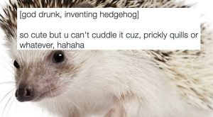24 Hilarious Tweets About The Creation Of Animals