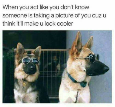 25 Of Today's Freshest Pics And Memes