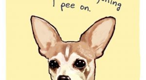 The Hilarious Illustrated Confessions Of Our Pets – 22 Pics #funnydoghilarious explore P...