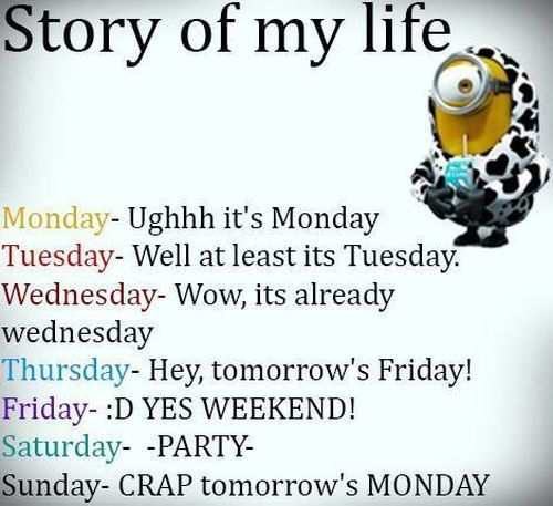 Story of life 。◕‿◕。 See my Despicable Me Minions pins