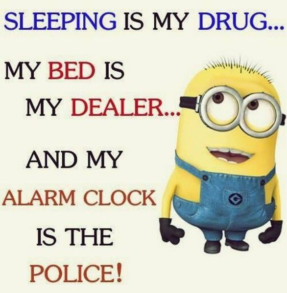 Random Funny Minion quotes (07:25:44 AM, Saturday 20, June 2015 PDT) – 10 -…