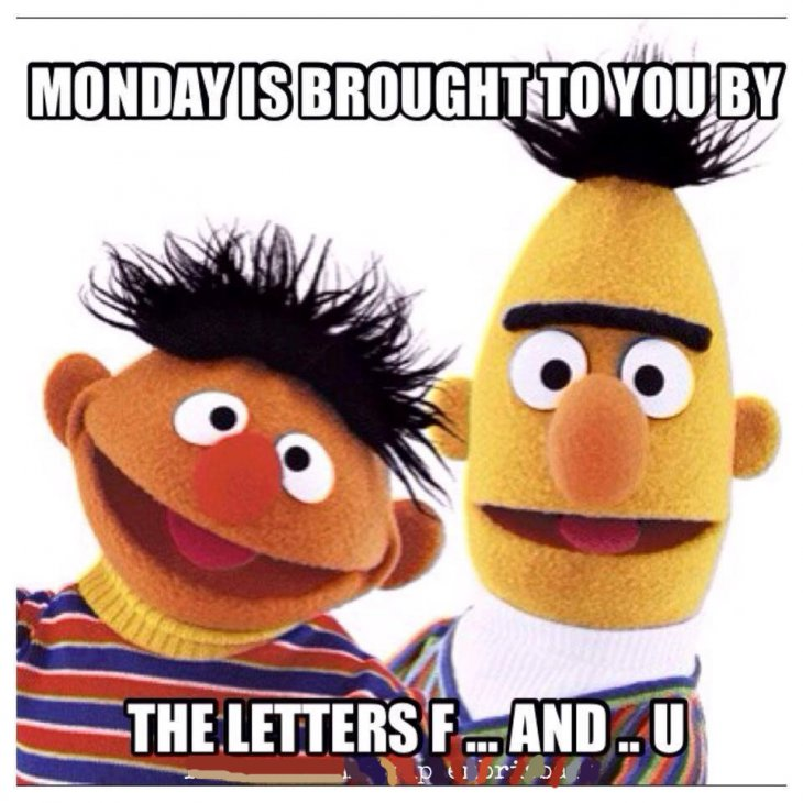 Monday Is Brought To You By The Letters F And U monday monday memes…