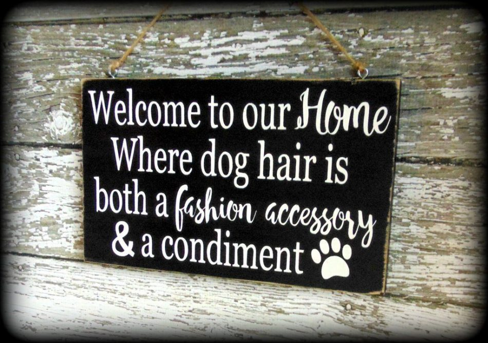 Funny Dog Sign, Pet Lover Gift, Welcome Sign, Custom Wooden Wall Decor #funnydogpictures e...