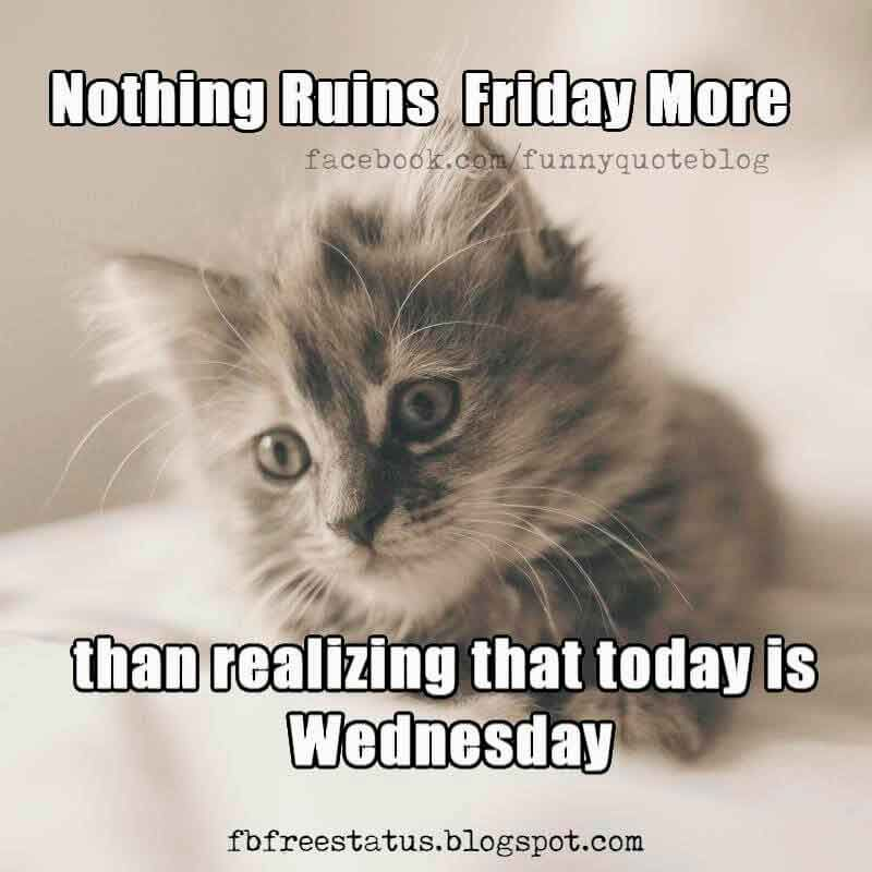 Nothing ruins Friday more than realizing that today is Wednesday, Happy Wednesday Meme