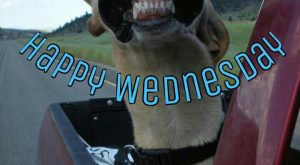 Happy Wednesday good morning wednesday happy wednesday good morning wednesday wednesday im...