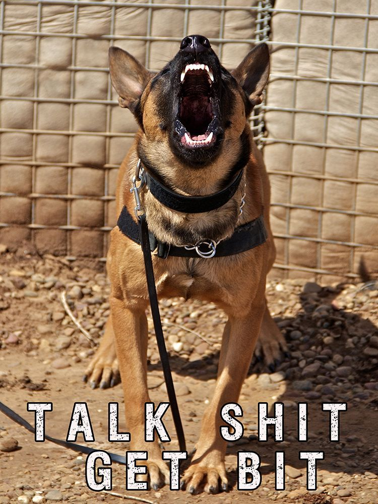 Law enforcement K9 poster