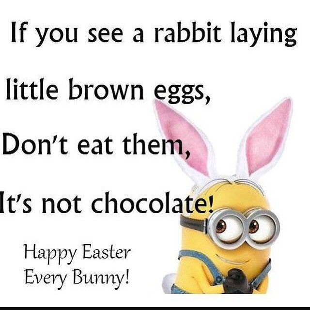 """Top 100 easter quotes photos Minion Easter humor. #instaquotes search Pinterest"""">..."""