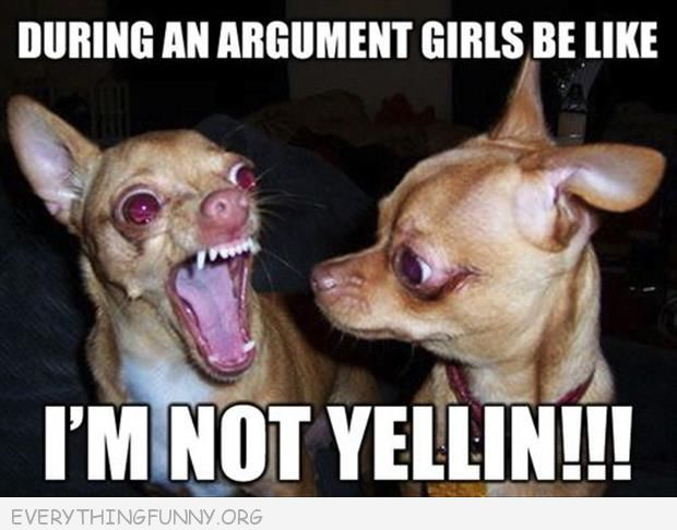 funny caption pictures during an argument with girls i'm not yelling