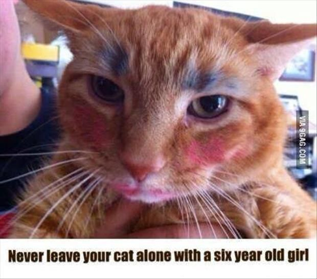Dump A Day Attack Of Animals With Funny Captions – 25 Pics