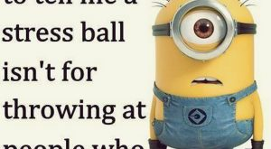 Cute Friday Minions Funny captions (10:53:20 PM, Friday 20, November 2015 PST) – 10…