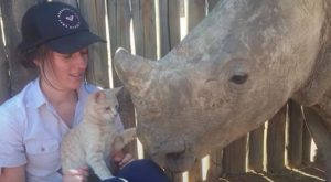 Mewie the cat plays dad to all kinds of orphaned wildlife
