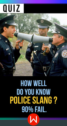 Whether you work in the police department or binge watch Cops, let's see just…