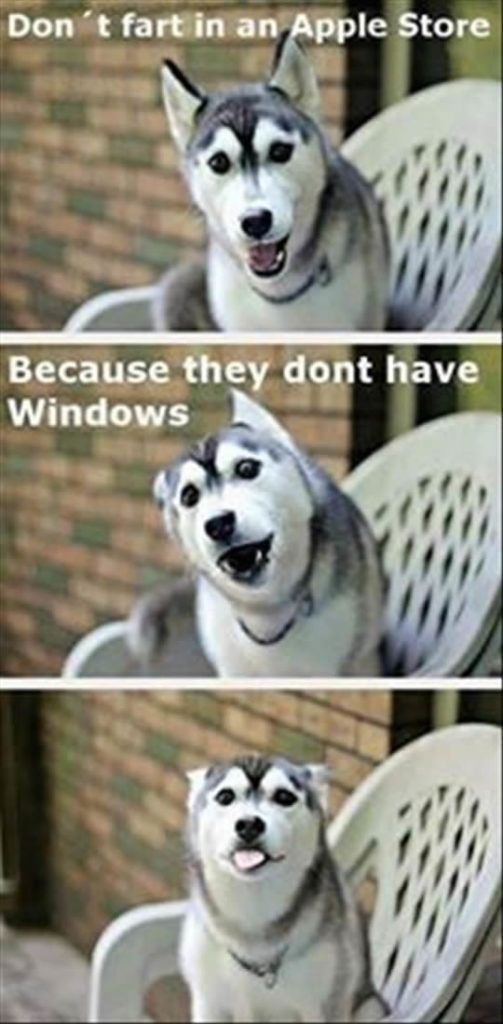 Who doesn't need a laugh? Here are 45 funny dog memes that deal with…