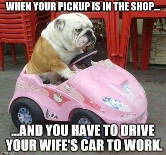 35 Funny Pictures Of The Day – Don't you just hate having that happen.…