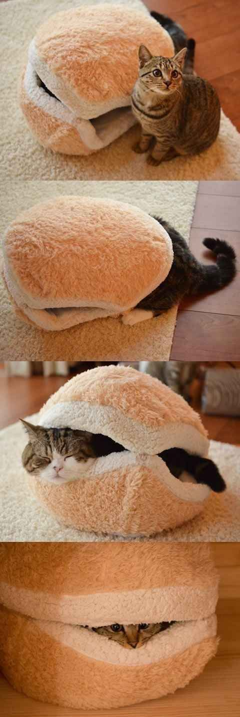 House For Small and Medium Dogs also Suitable For almost All Cats