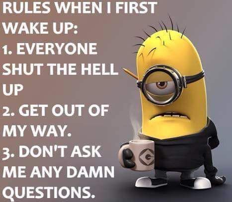 Image result for minion memes fresh and new 2018
