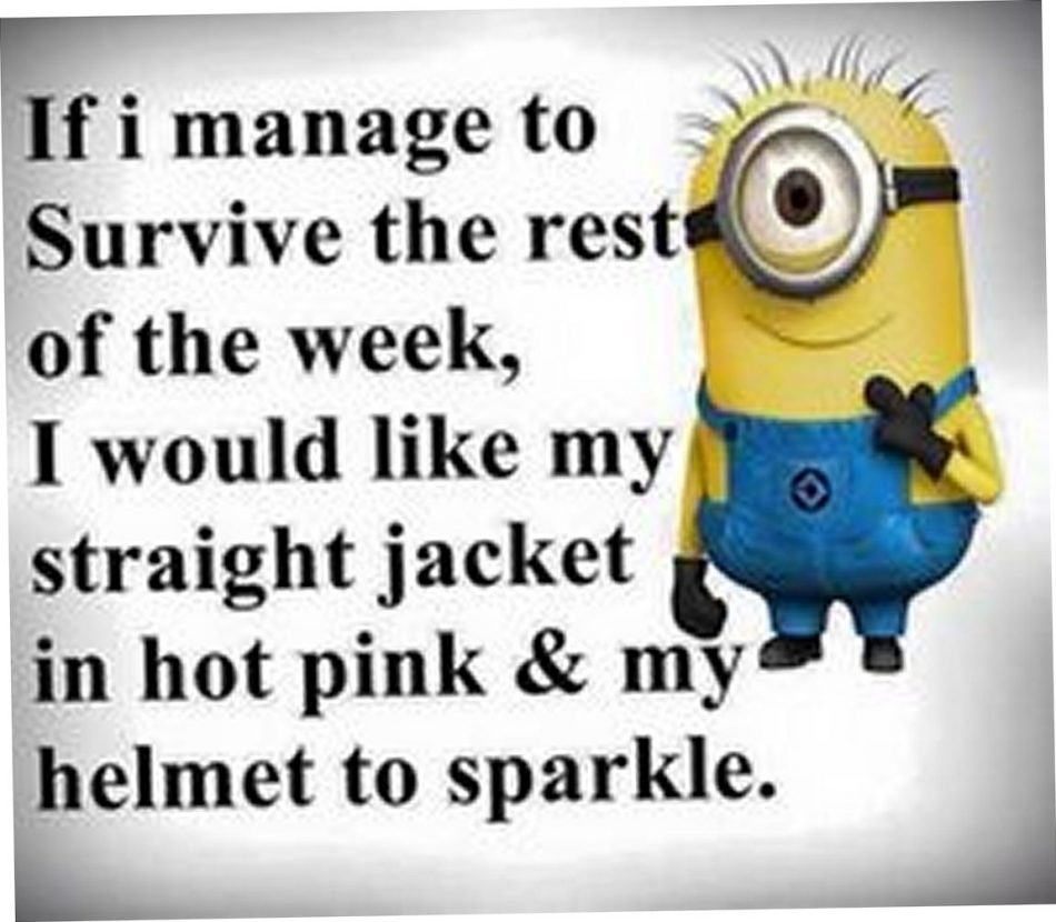 This will be me the next two weeks! Dani have my hot pink jacket…