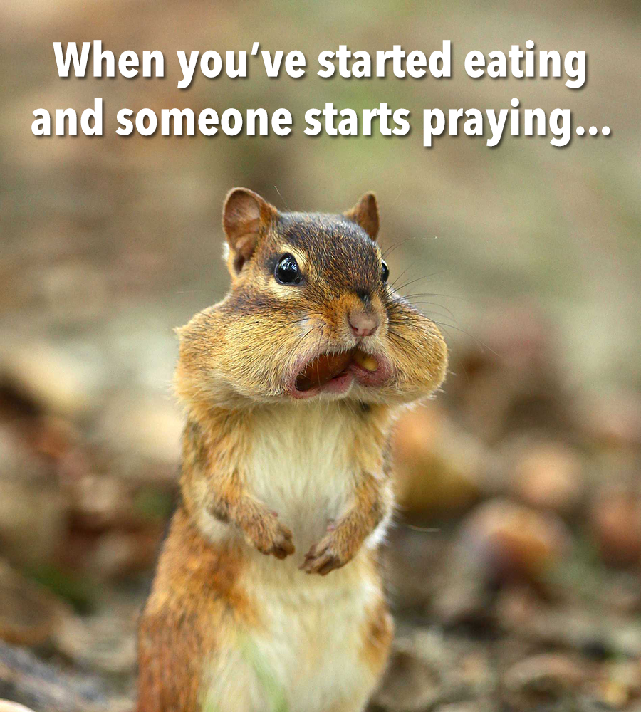 When you've started eating and someone starts too funny!