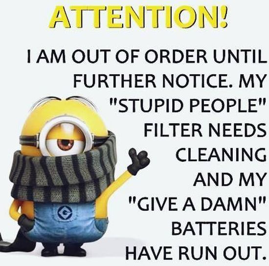 New Minions Quotes Of The Week – August 4, 2015