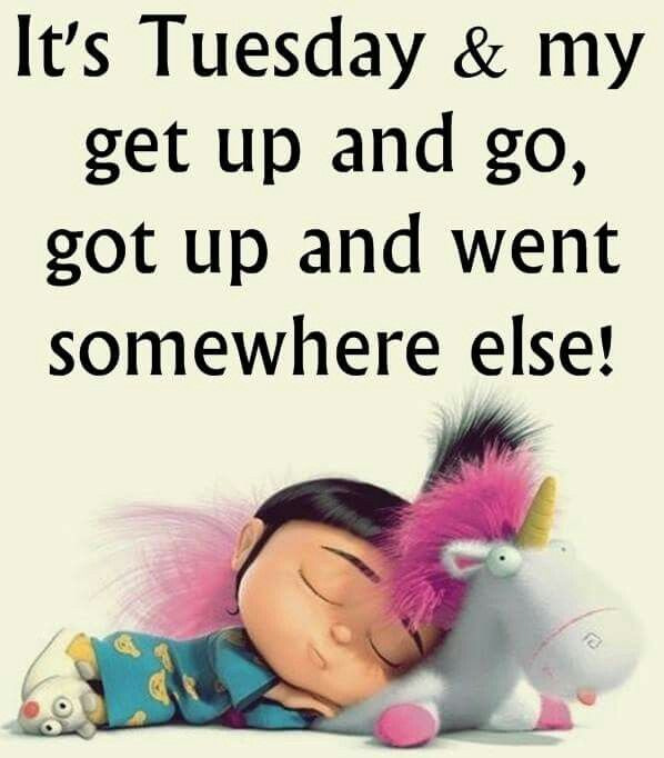 It's Tuesday and my get up and go got up and went somewhere else