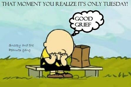 """Don't feel sad if it's only #Tuesday search Pinterest""""> #Tuesday. Continue your ..."""