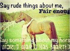 only I can say bad things about my horse, because I know MY horse…