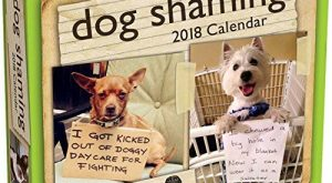 Dog Shaming 2018 Day-to-Day Calendar by Pascale Lemire