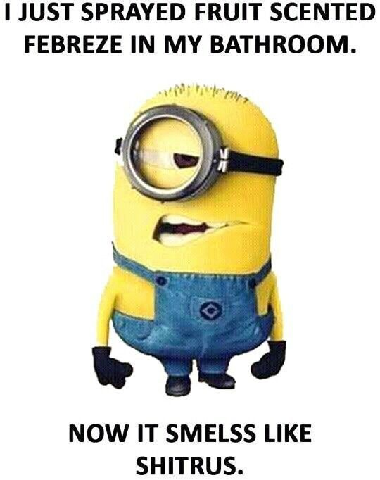 36 Funny Minions Quotes You're Going To Love 30