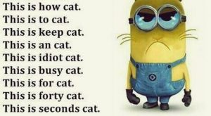 lol. minion u are right for everything here. 30 Minions Humor Quotes