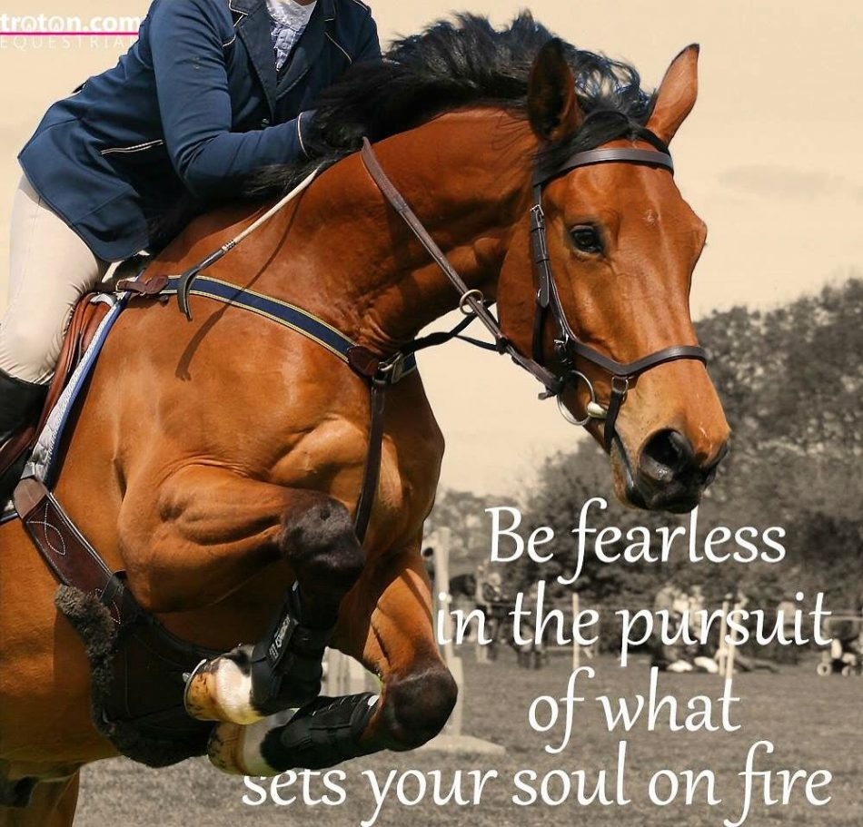 Be fearless in the pursuit of what sets your soul on fire #equestrian explore…