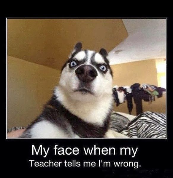 "My face when my Teacher tells me I'm wrong. #funny explore Pinterest""> #funny ..."