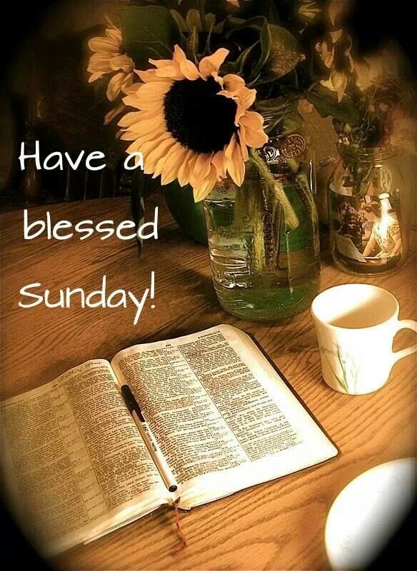 Have a blessed Sunday!