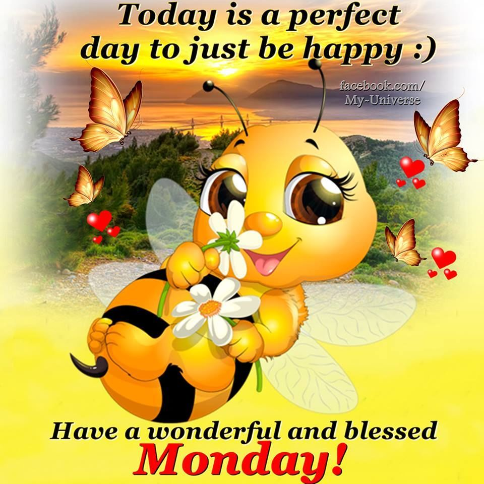 Have A Wonderful And Blessed Monday monday good morning ...