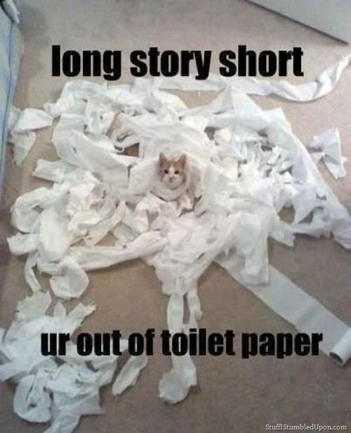 has ur kitty ever done this mine hasnt yet! :3