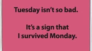 I survived Monday – Chin Up – Face the day!!