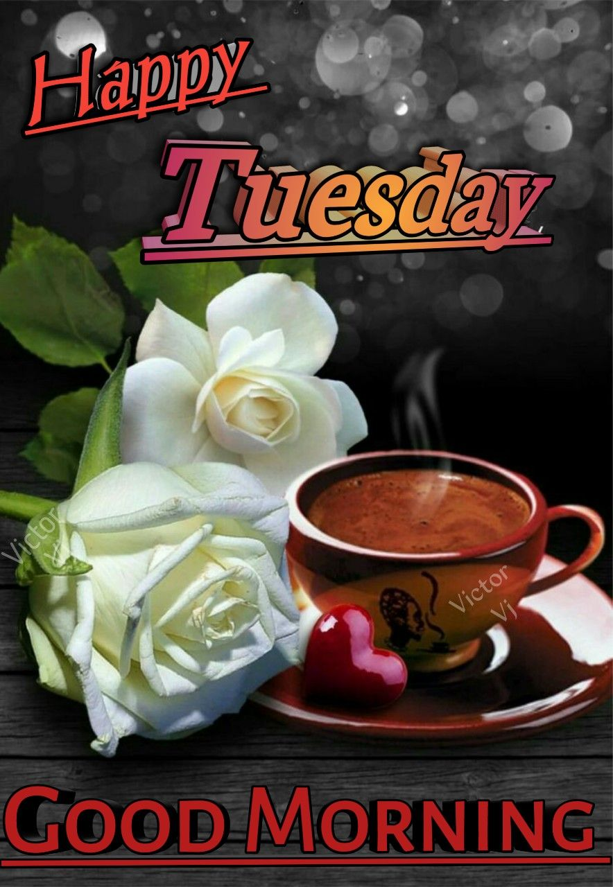 Happy Tuesday Greetings