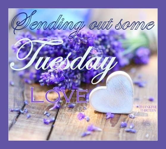Sending out some Tuesday Love days of the week tuesday happy tuesday tuesday greeting…