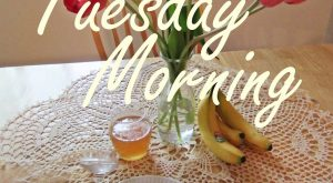 Tuesday Morning quotes quote morning days of the week tuesday tuesday quotes