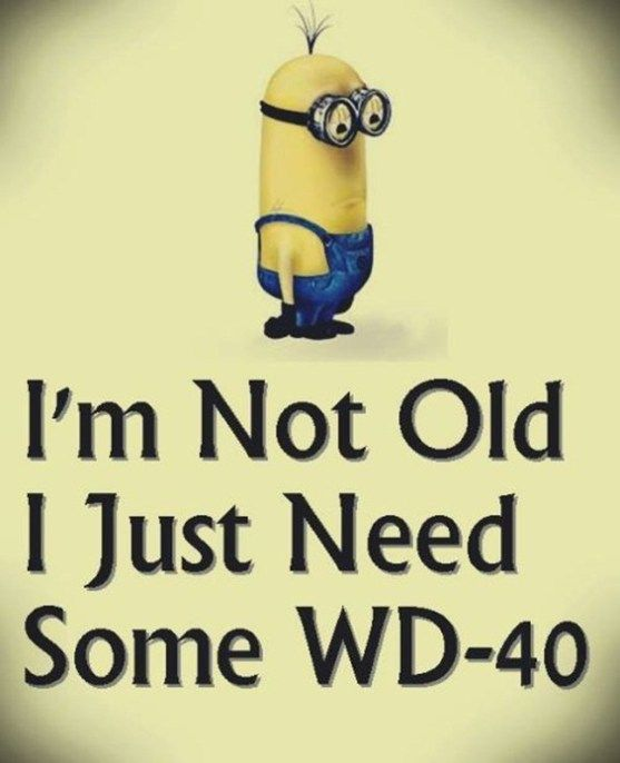 37 Very Funny minions Quotes 17