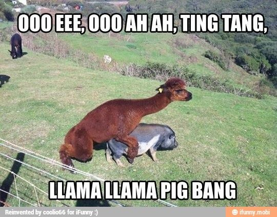 sing it out loud, and why do I find this so funny? haha