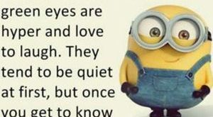 minion memes – Google Search