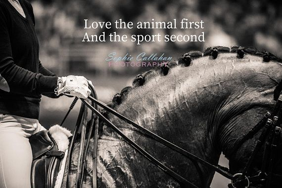 A 'Love the Animal First' Print
