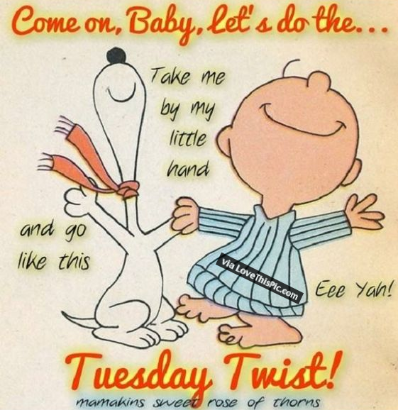 Do The Tuesday Twist