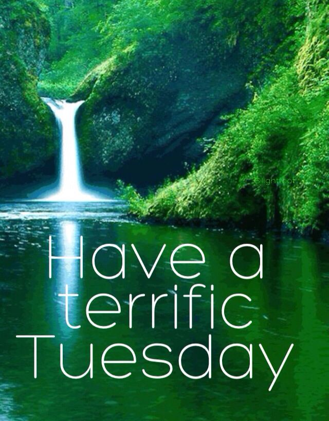 Have a terrific tuesday tuesday tuesday quotes happy tuesday tuesday quote…