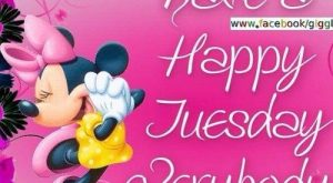 Have A Happy Tuesday Everyone tuesday tuesday quotes happy tuesday tuesday…