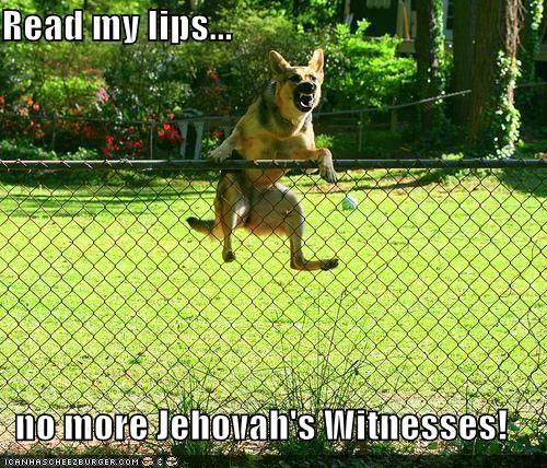 Read my no more Jehovah's Witnesses!