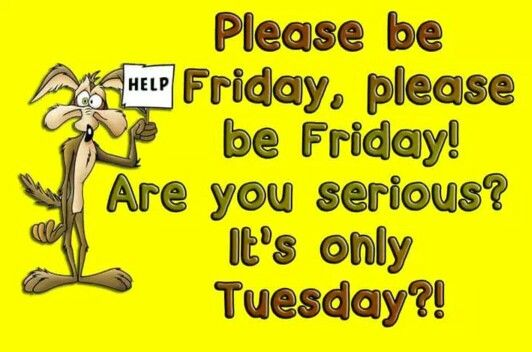 """#Friday search Pinterest""""> #Friday, are you serious? It's only #Tuesday search..."""
