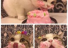 This princess enjoying her birthday cake. | Just 19 Really, Really Cute Pictures Of…