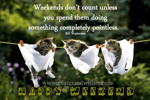 happy weekend quotes and images – Google Search